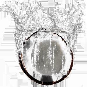 coco na agua